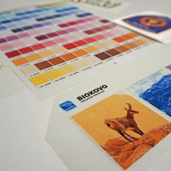 Kalibracija boja prema pantone skali