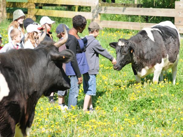 approche-animaux-ferme-pedagogique-87499-3_w600