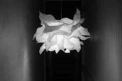Lumière sur le design