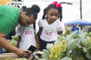 Sorority dedicates community garden in Houston's Third Ward