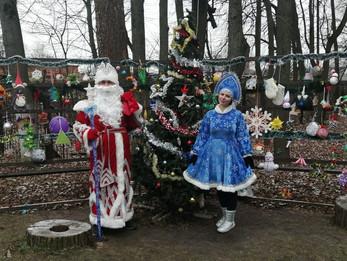 Викторина от Деда Мороза в Центральном парке