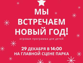 Мы встречаем Новый Год!