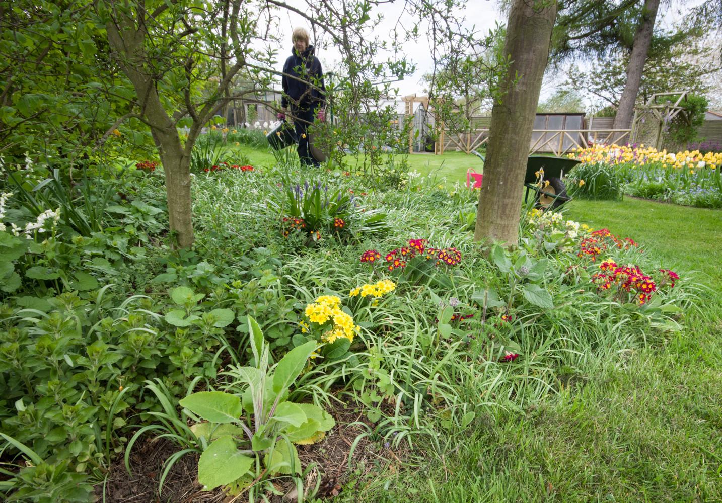 Spring garden -12.jpg
