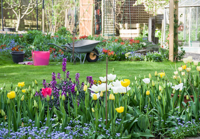 Spring garden -05.jpg