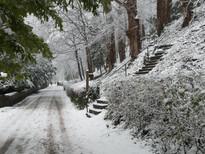 Snow-08.jpg