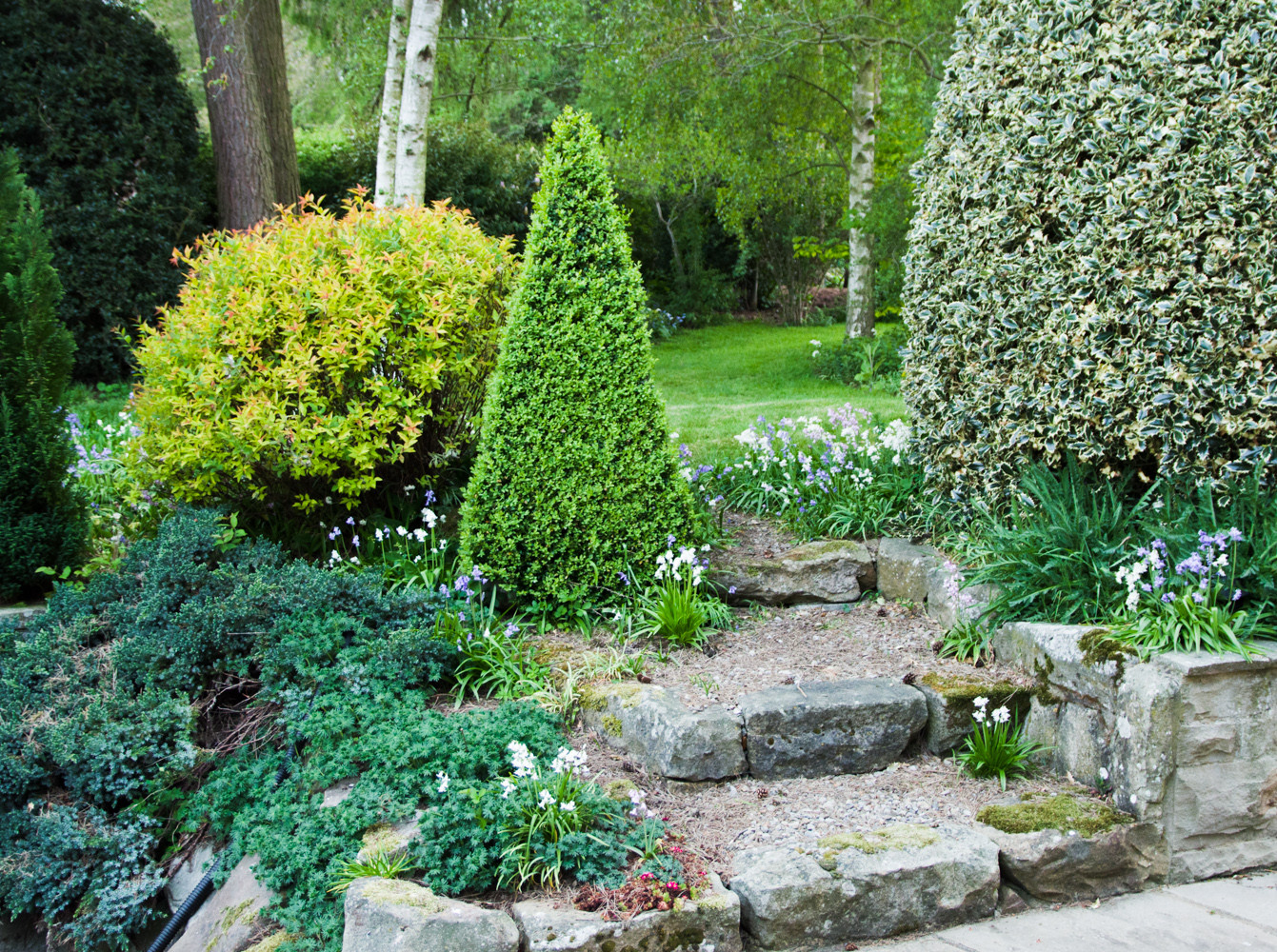 Spring garden -13.jpg