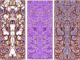 Biomorph triptych