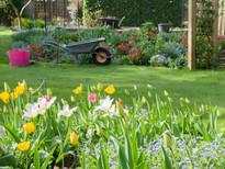 Spring garden -06.jpg