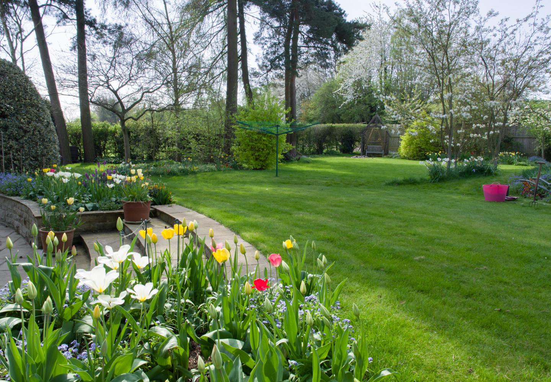 Spring garden -07.jpg