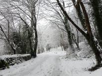 Snow-07.jpg