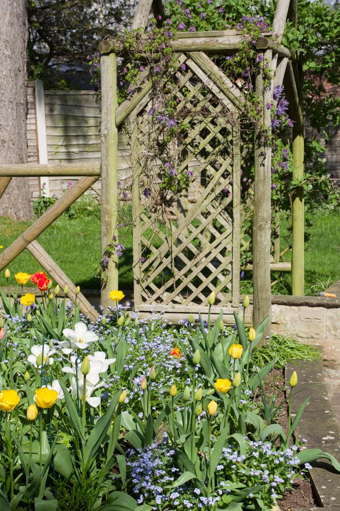 Spring garden -10.jpg