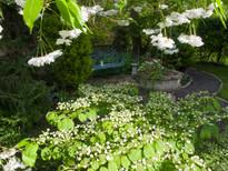 Spring garden -24.jpg