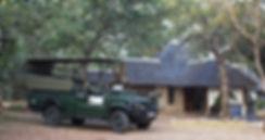 Kruger-Photo-Safari419.jpg