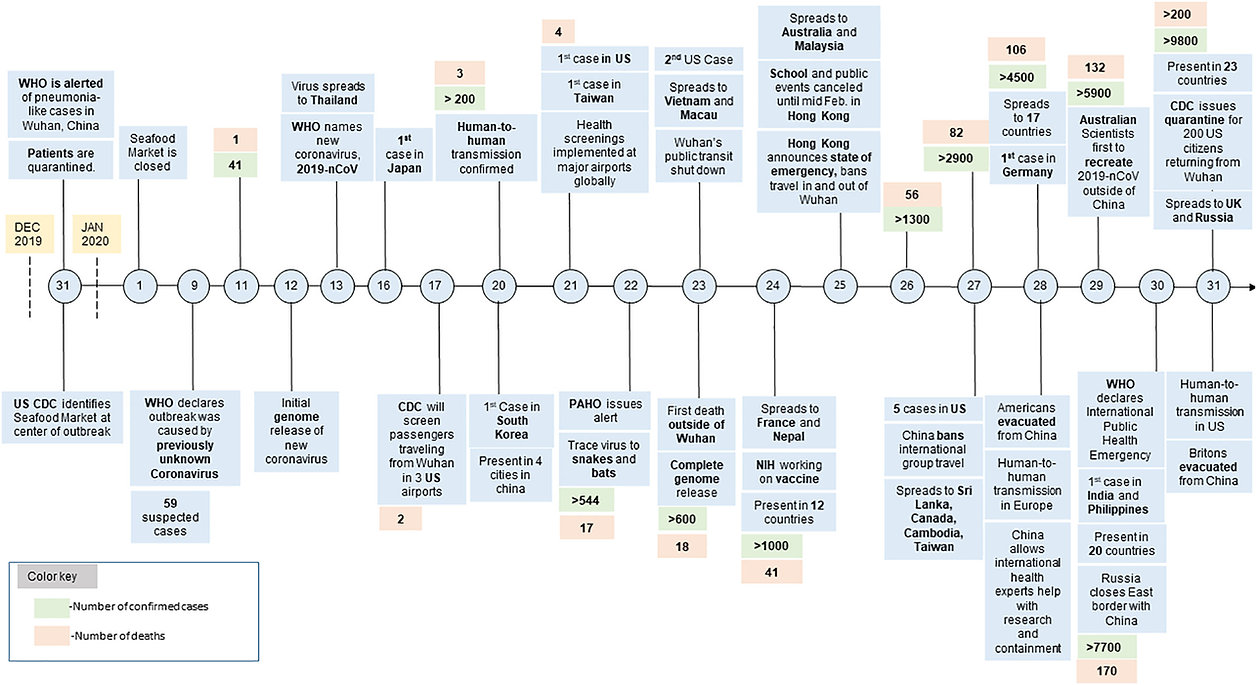 COVID timeline.jpg