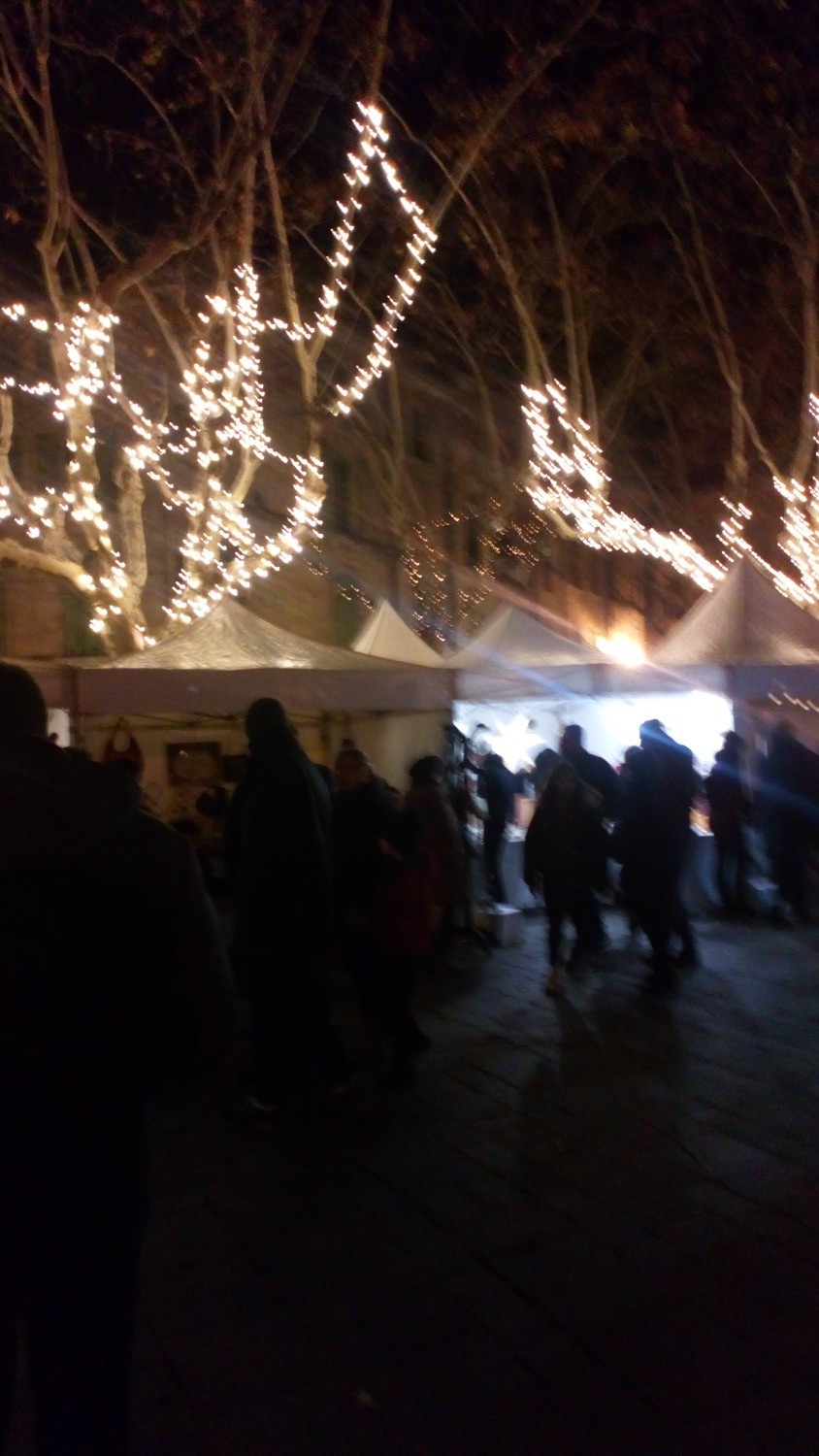 white lights in the plane trees above the market tents