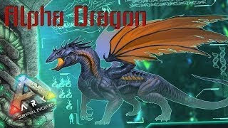 Alpha Dragon Boss Service