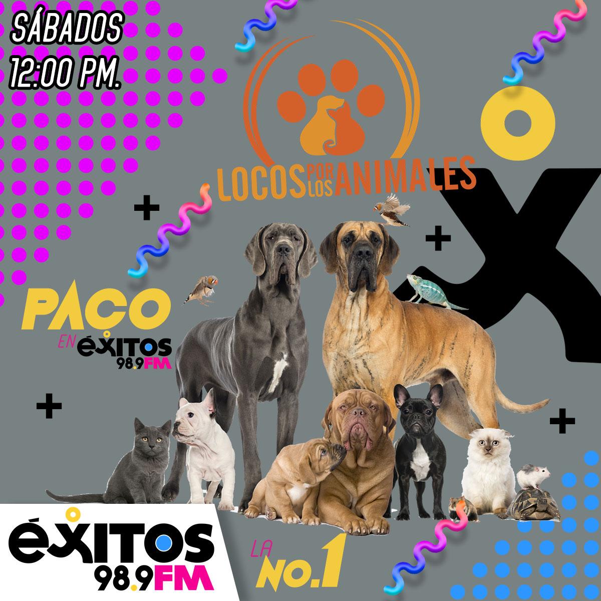 LOCOS POR LOS ANIMALES 001
