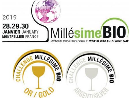 Millésime Bio 2019: world organic wine fair !