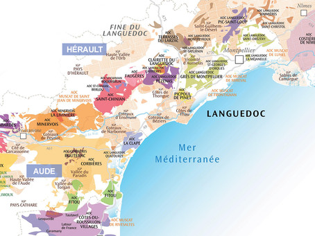 Andrew Jefford from Decanter about Languedoc