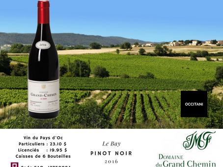Un 100% Pinot Noir, 100% languedocien !!