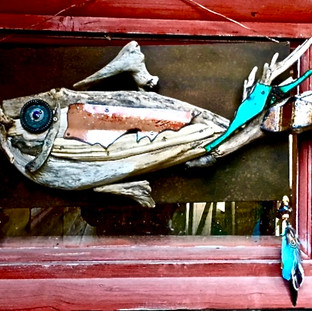 Rons Fish SOLD