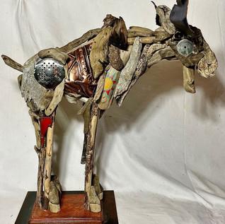 Montana Moose #2