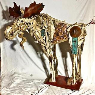 Copper Mountain Moose