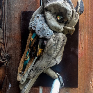 Great Horned Owl Sold