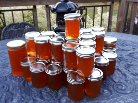 10 kg of 100% Ontario Raw & Unfiltered Honey.