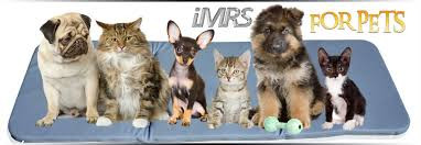 imrs for pets.jpg