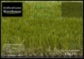 Olive Green 1.jpg