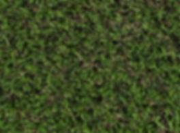 Glade Emerald - Top.JPG