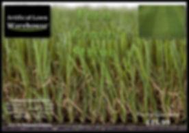 Fern Green Stripe 1.jpg