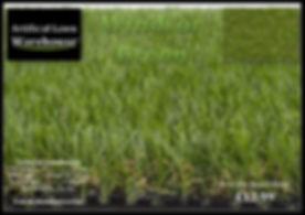 Windsor Green 1.jpg