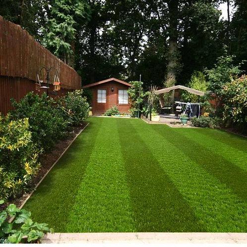 Fern Green Stripe