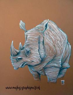 Rhinocéros-2018-HD