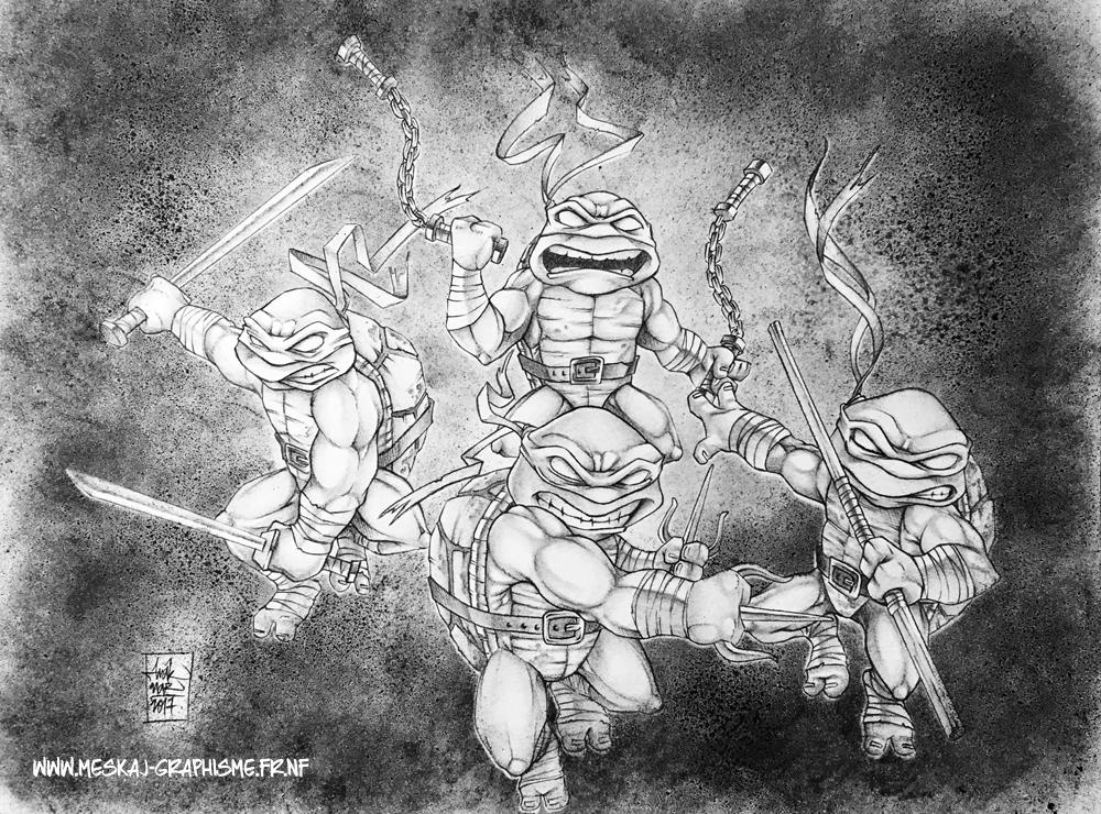 Ninja turtles web