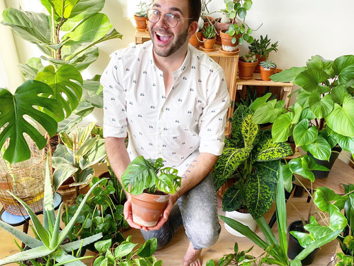Maak je eigen mini-ecosysteem met Thomas van Planttrekker