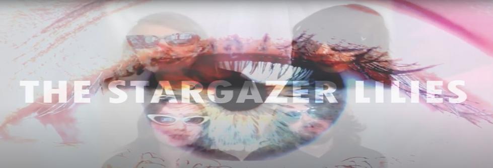 The Stargazer Lilies Banner