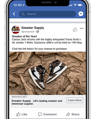 FB Ad example.png