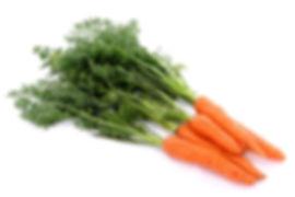 Морковь оптом и в розницу в Москве и Московской области