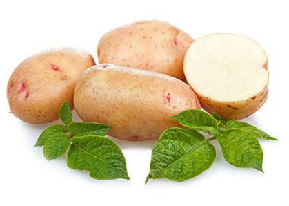 картофель оптом и в розницу в Москве и Московской области