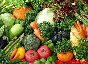 Купить рассаду овощей оптом дешево в Москве