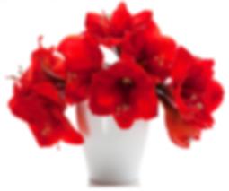Купить цветочные кашпо оптом и в розницу в Москве дешево