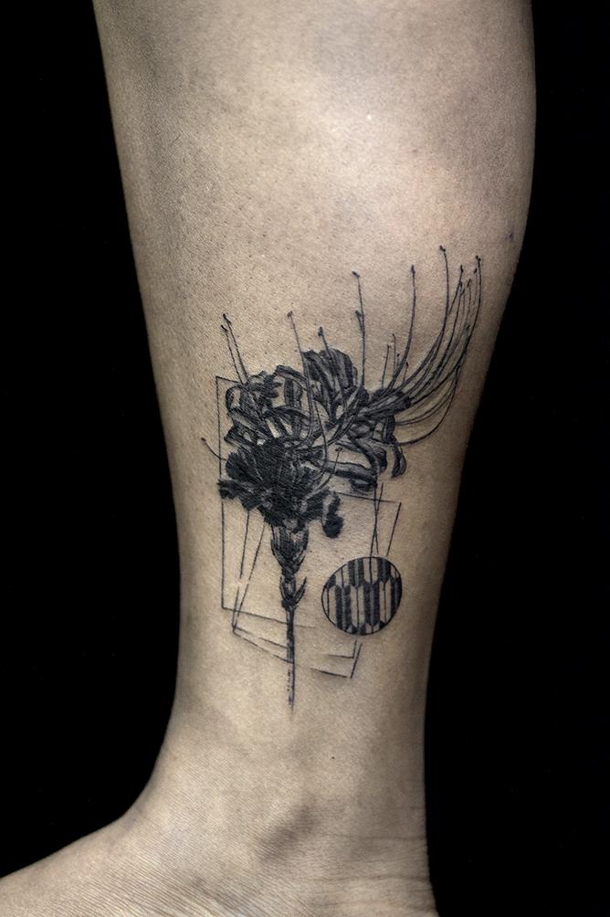 spider carnation