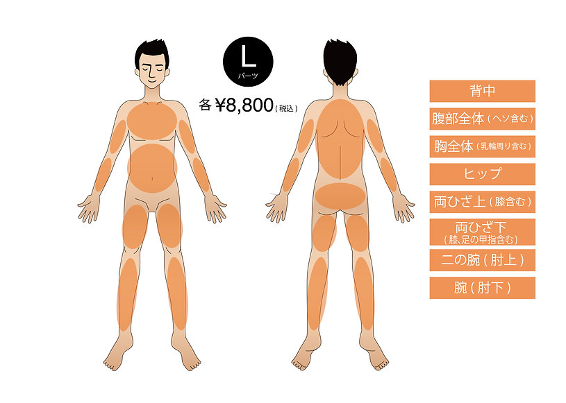 body_01-03.jpg