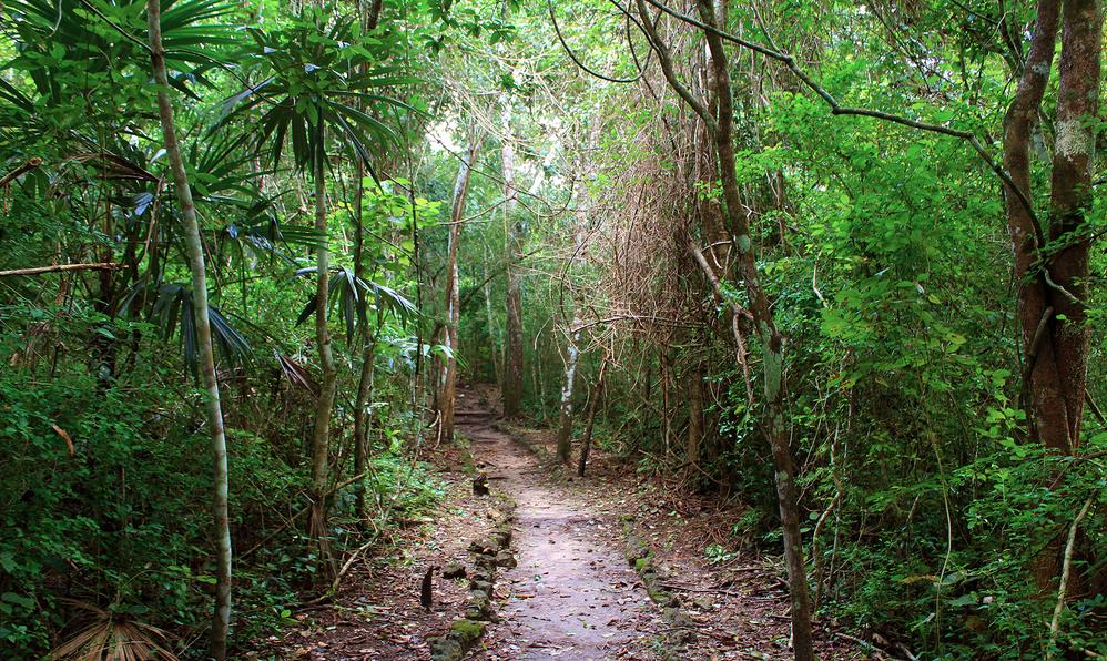 Cerro Cahui hike