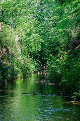 ロバハウス玉川上水のコピー.jpg