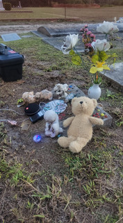 Image submitted by customer Tiffany P., featuring Scare Bear and a Spirit Ball during an investigation in a public cemetary. The Spirit Ball is being touched!