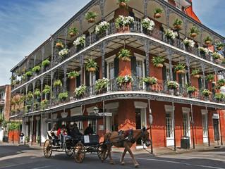 New - New Orleans + Caribbean Cruise              火熱新團 新奧爾良 + 加勒比海郵輪
